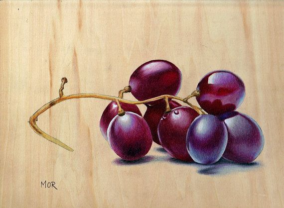 Red Grapes Original Colored Pencil Drawing On By DietrichsArt