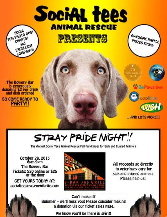Show your Stray Pride! Cool pets, Animal shelter, Humane