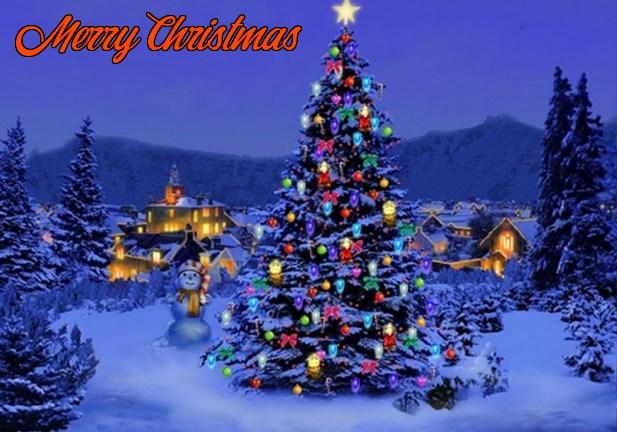 Christmas Tree Ecards Christmas Wallpaper Christmas Desktop Christmas Wallpaper Free