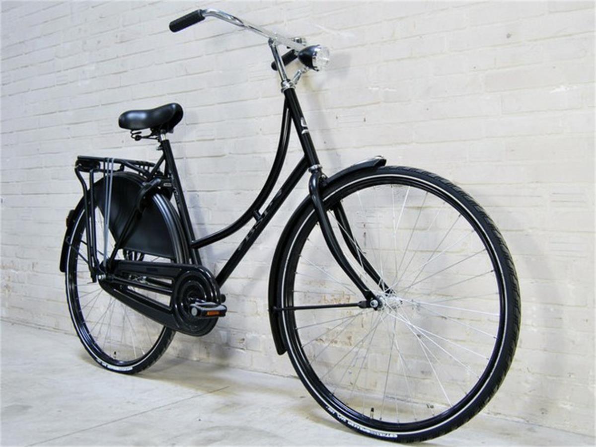 03e5608055bd Flying Dutchman bikes - The Classy Grandma