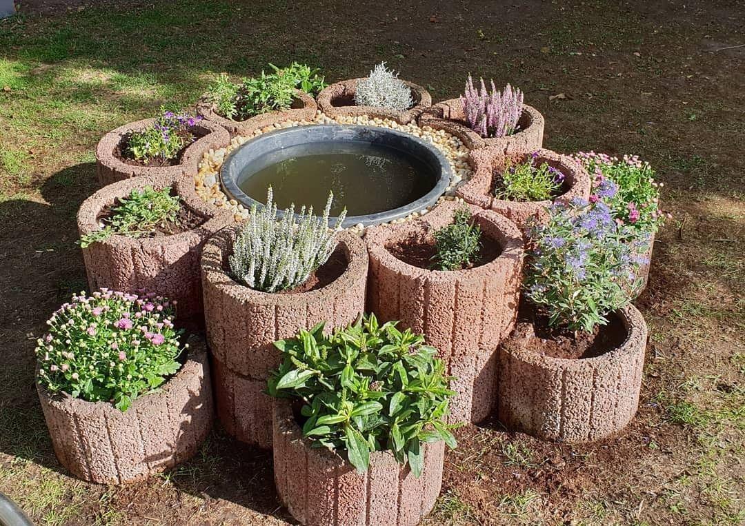 einheimische pflanzen #einheimischepflanzen Steinringe