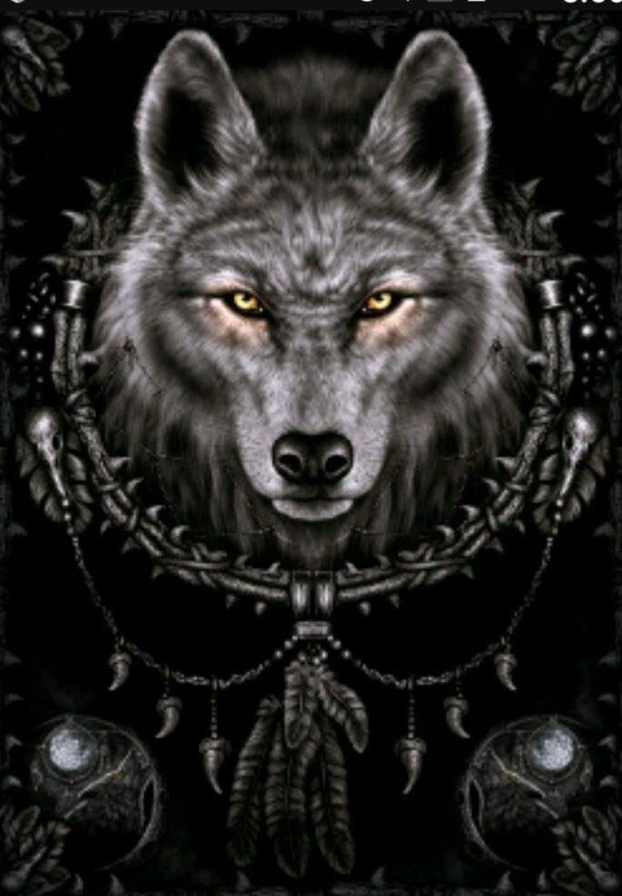 Pin by Wolf spirit on Wolves Wolf dreamcatcher, Wolf