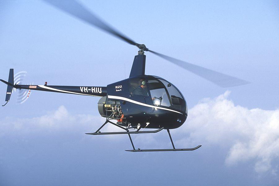 Da Vinci è stato molto affascinato dal volo. Egli avrebbe inventato l'elicottero. Si tratta di un dispositivo di volo. Permette alle persone di volare ad altezze molto elevate e vanno da un posto all'altro velocemente.