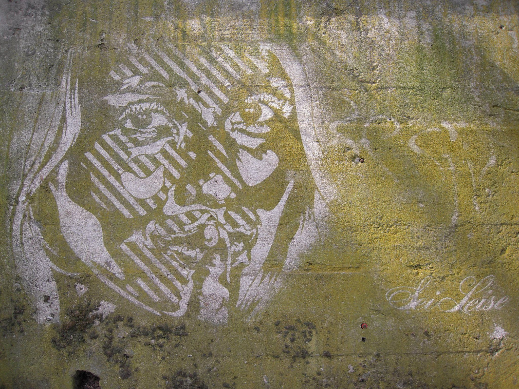 seiLeise Reverse Graffiti