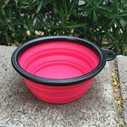 PV Pet Premium Collapsible Plastic Food/Water Pet Bowl / Travel Bowl - 5 Colors to Choose From!
