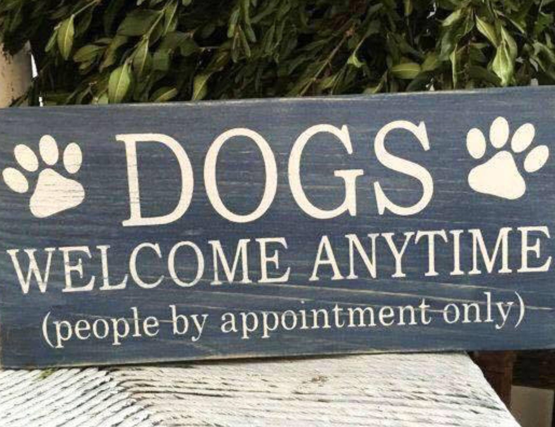 Funny Dog Sign Funny Dog Signs Pet Signs Funny Kitchen Signs
