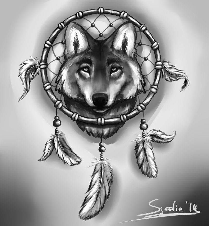 Drawings Of Dream Catchers And Animals Wolf And Dreamcatcher By Sjoelie Dad Art Wolf Dreamcatcher Tattoo
