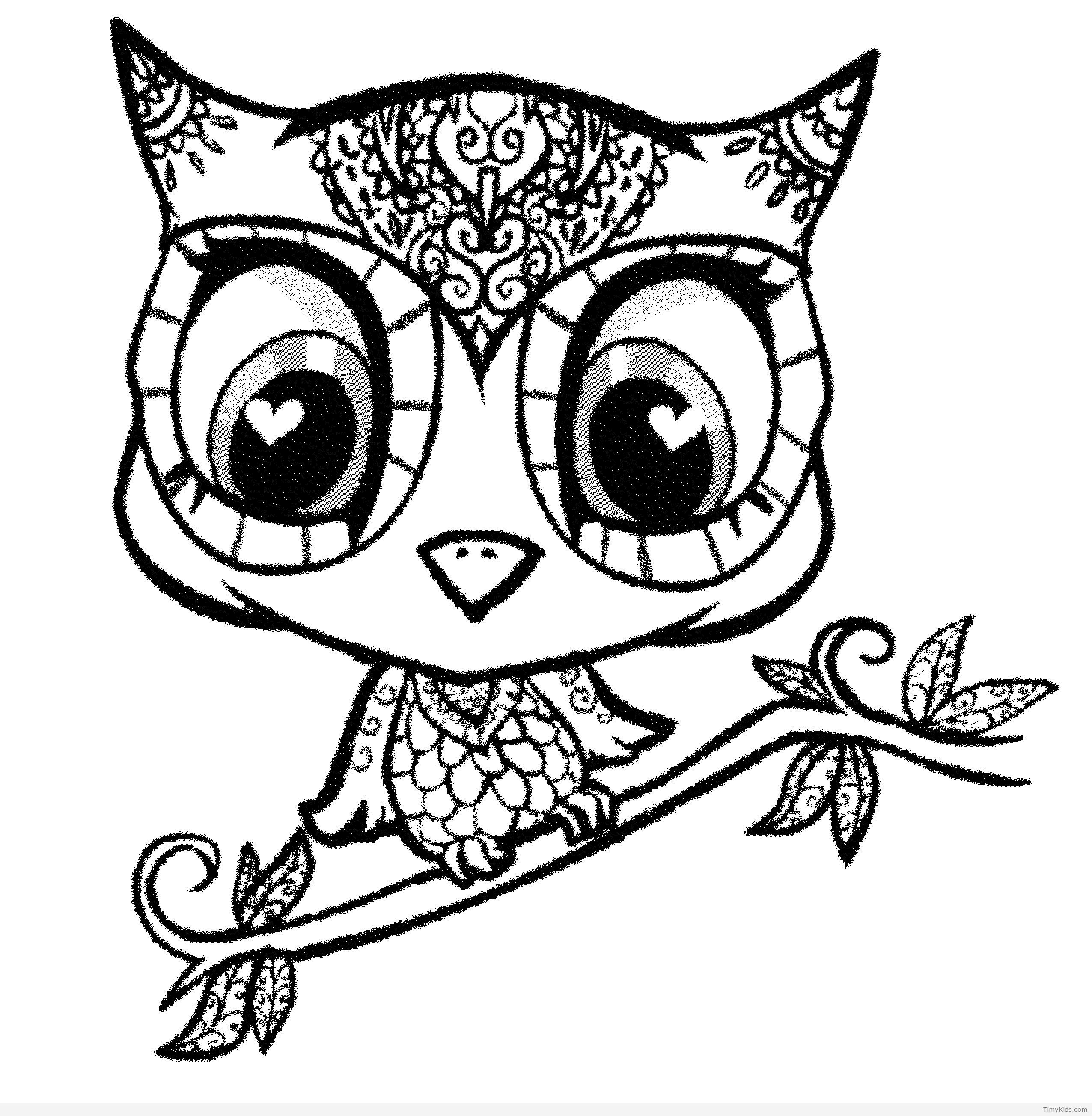 Timykids Owl Coloring Pages