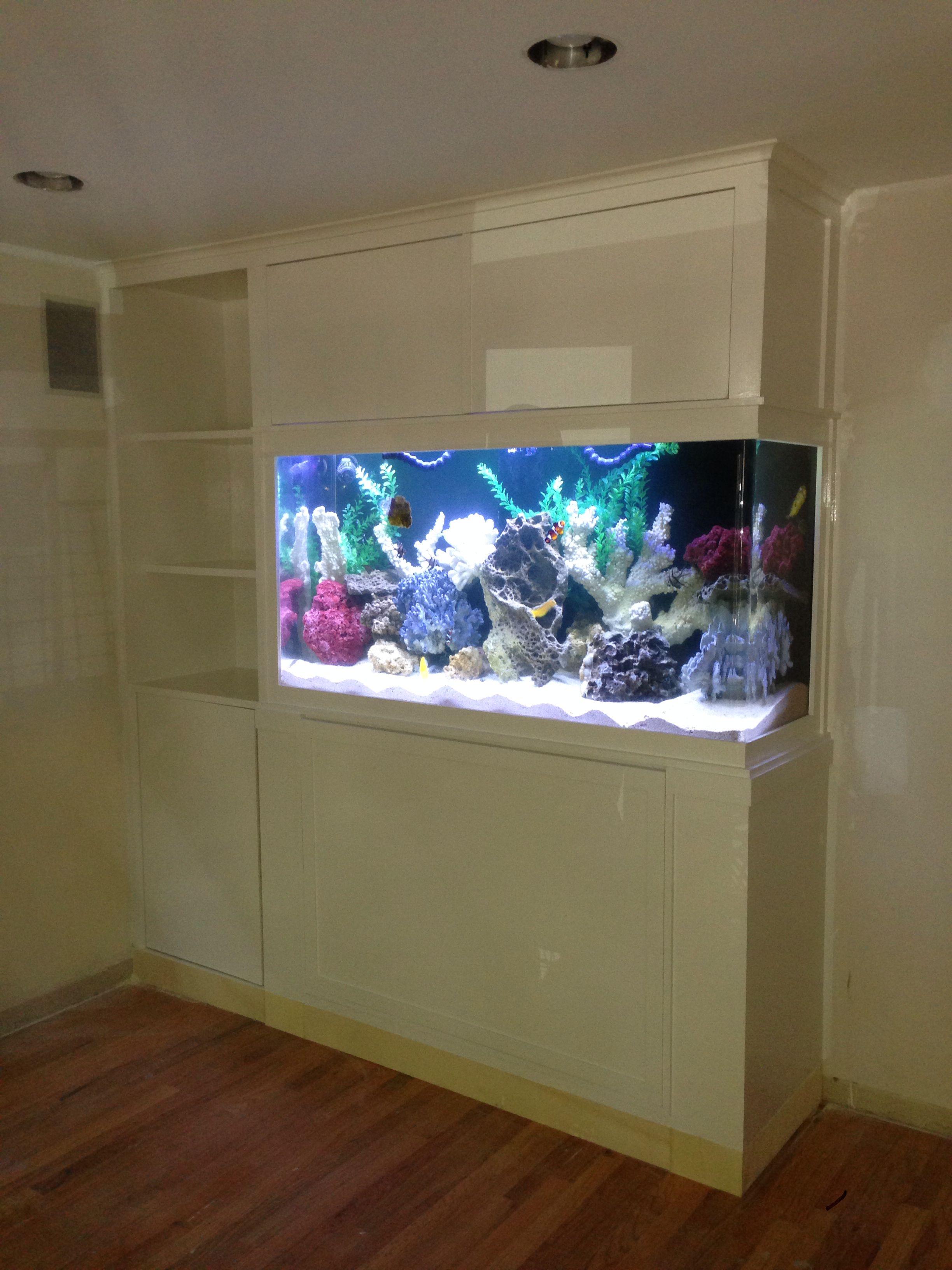 Built In Fish Tank Fish Tank Wall Wall Aquarium Aquarium Cabinet