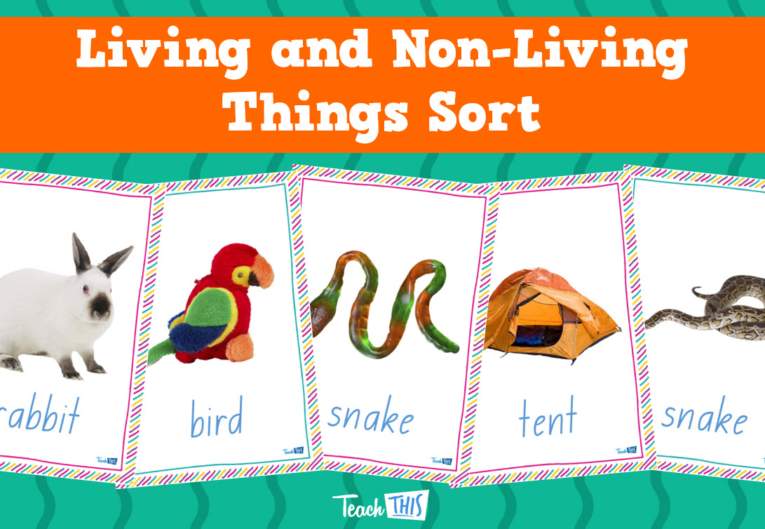 Living And Non Living Things Sort Printable Picture Theme Flash Cards Classroom Displays Teacher Resources Classroom Games Teacher Resources Science Games [ 754 x 1091 Pixel ]