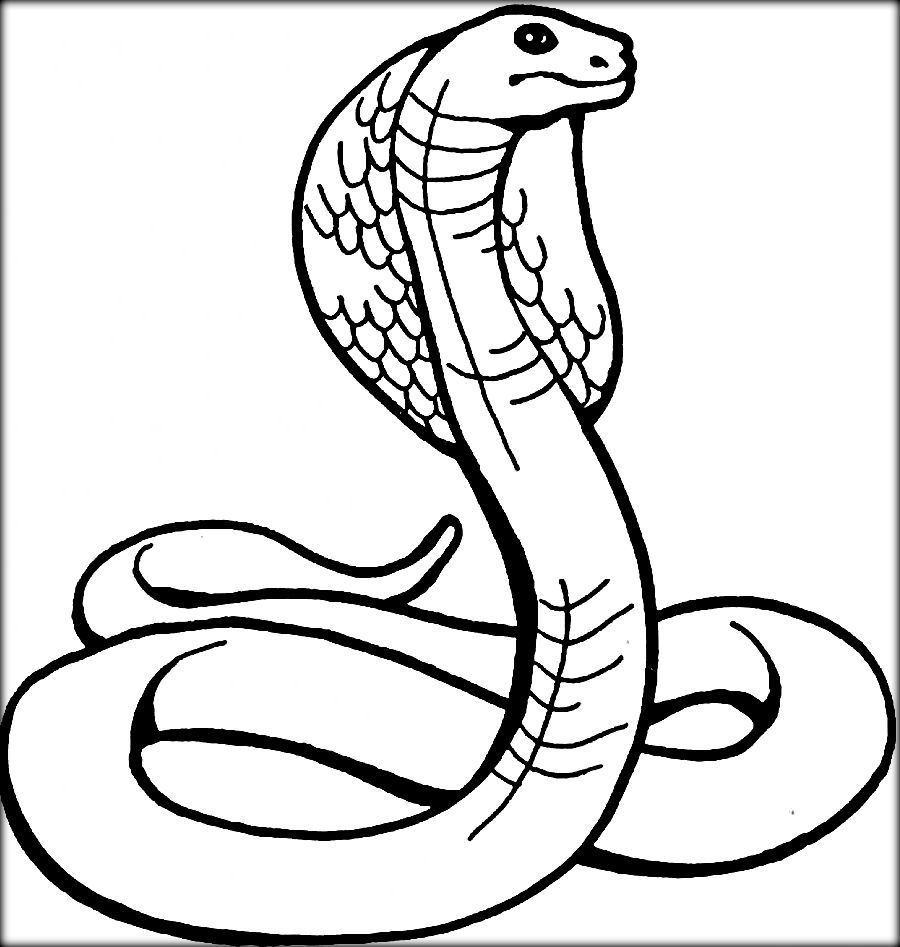 Cobra Snake Coloring Pages For Kids Snake Coloring Pages