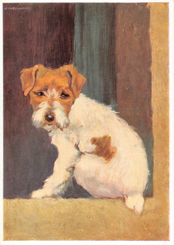 Vintage Blank Greeting Cards Ars Sacra Artist Schonermark Dog 3673 5 99 Blank Greeting Cards Artist Terrier