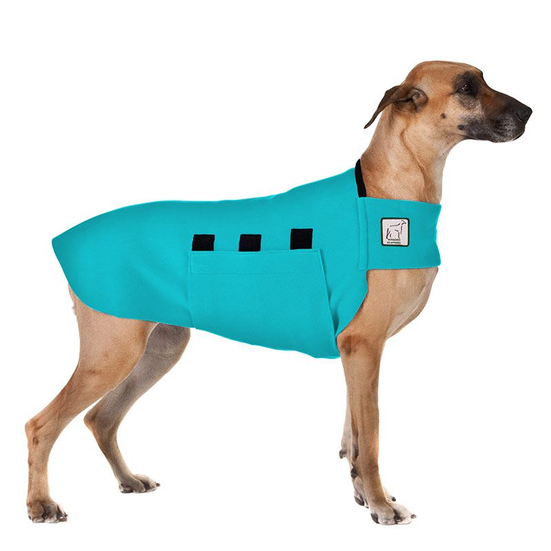 Great Dane Tummy Warmer Great Dane Dogs Dane Dog Dog Coats