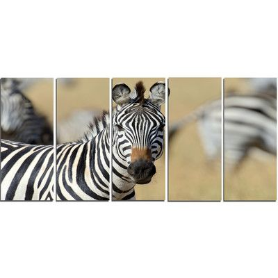 DesignArt 'African Zebra Close-Up View' 5 Piece Photographic Print on Wrapped Canvas Set