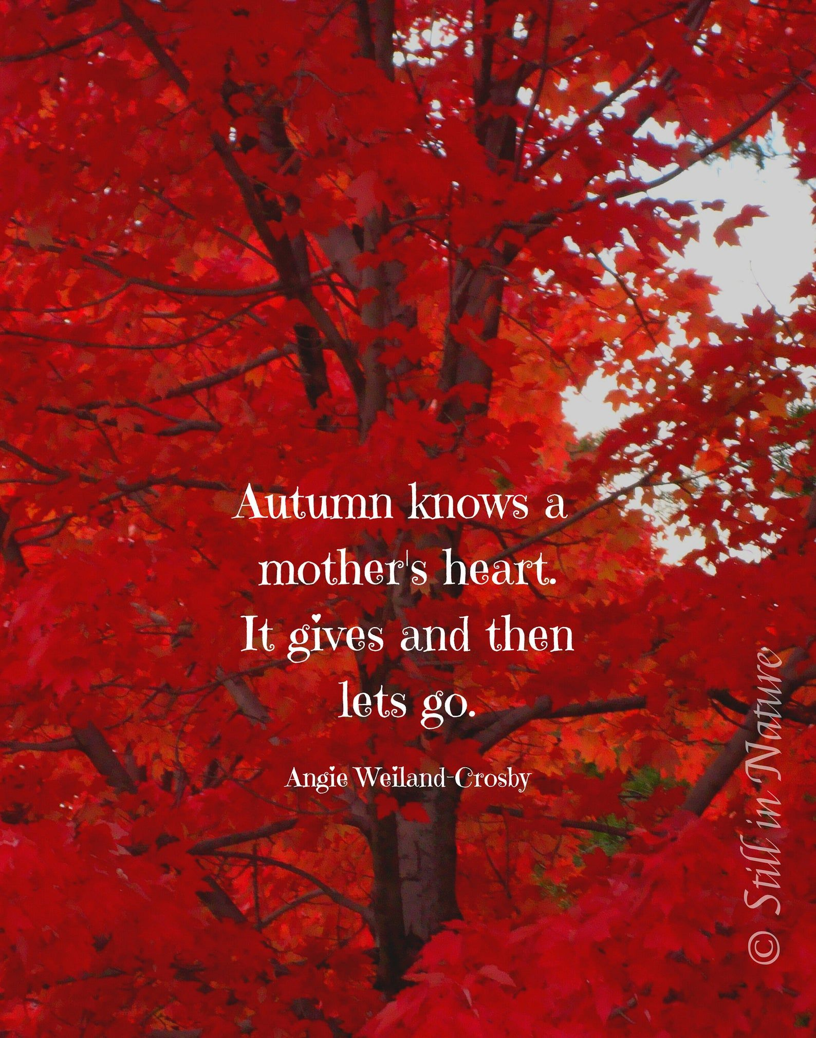 Angie Weiland Crosby Quote Autumn S Mother Heart Gift For Moms Nature Quote Art Print Quote Wall Decor Instant Download Nature Quotes Beautiful Photography Nature Autumn Quotes