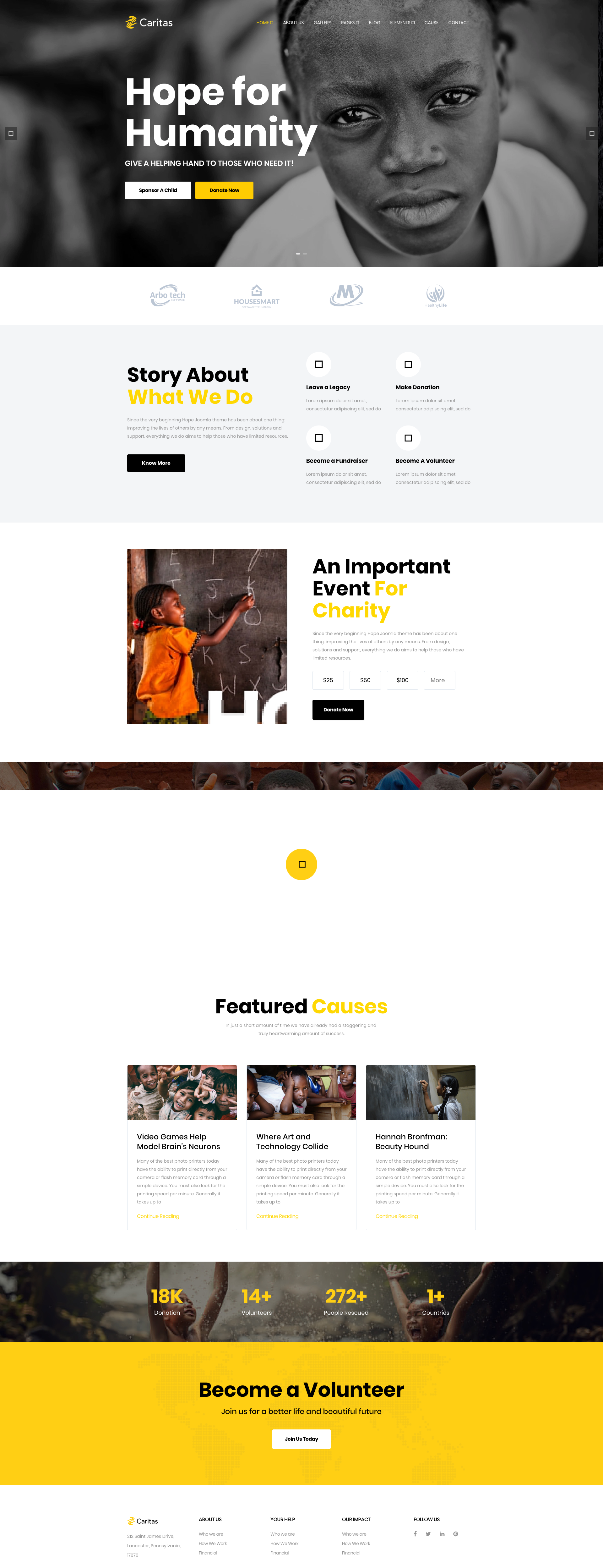 Caritas Donation Non Profit And Charity Wordpress Theme Charity Charity Activities Wordpress Theme