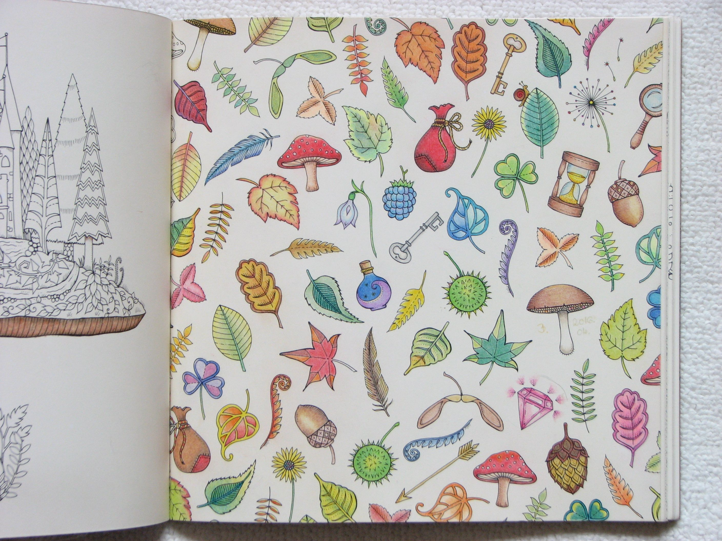 Johanna Basford Enchanted Forest Adult Coloring Book