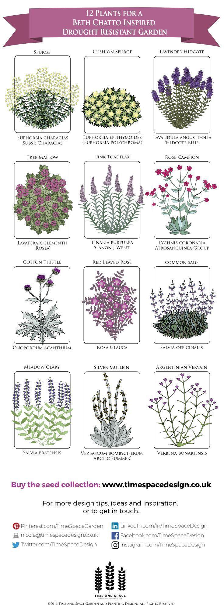 How do I create a Zen garden?  # # # # # # # # # Garden # Garden #zengardens