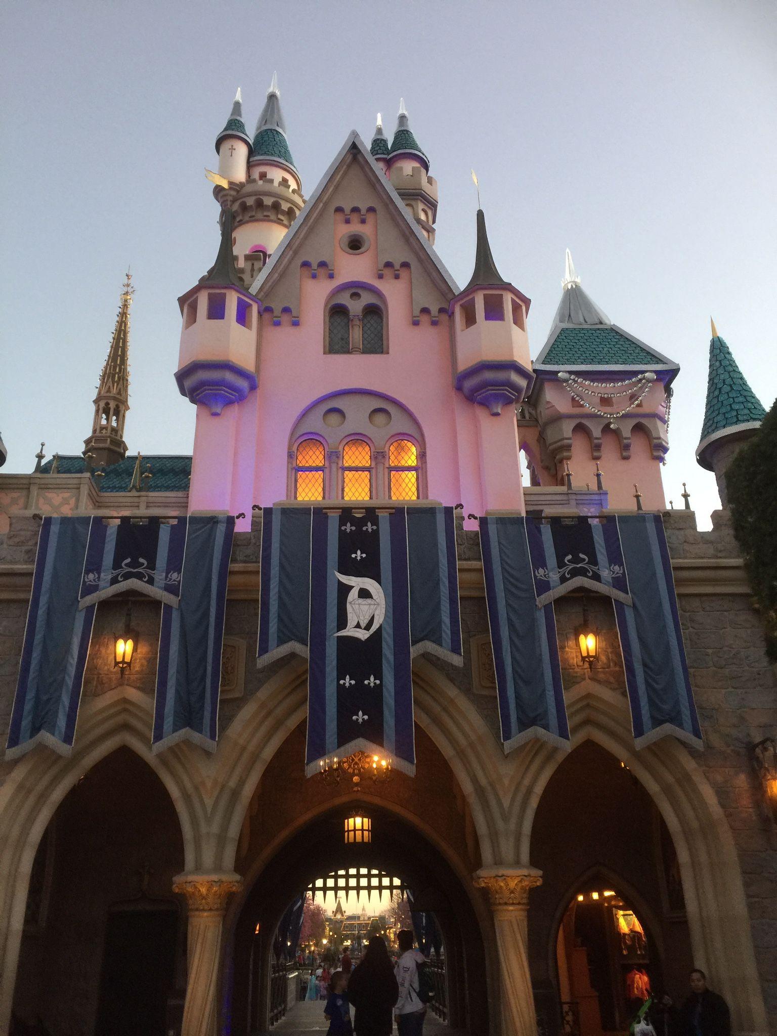 Pin By Hilda Morrison On Disneyland What Do I Dream