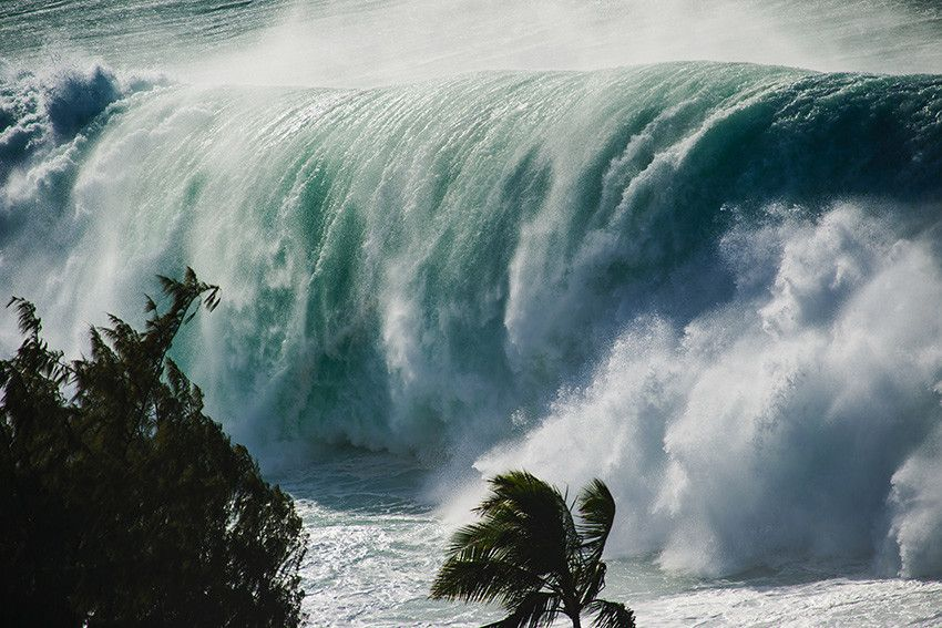 eafefba3ce6b Eddie: Big Wave from Clark Little Photography Hawaii News Now, North Shore  Beaches,