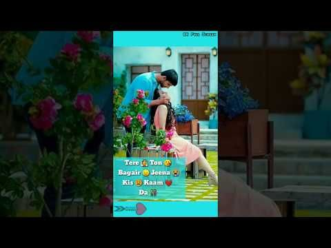 Whatsapp Status Video Download Zindagi Tere Naal / Zindagi ...