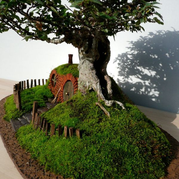 Attractive Tiny Hobbit Home Carved In Bonsai Trees Pictures Gallery