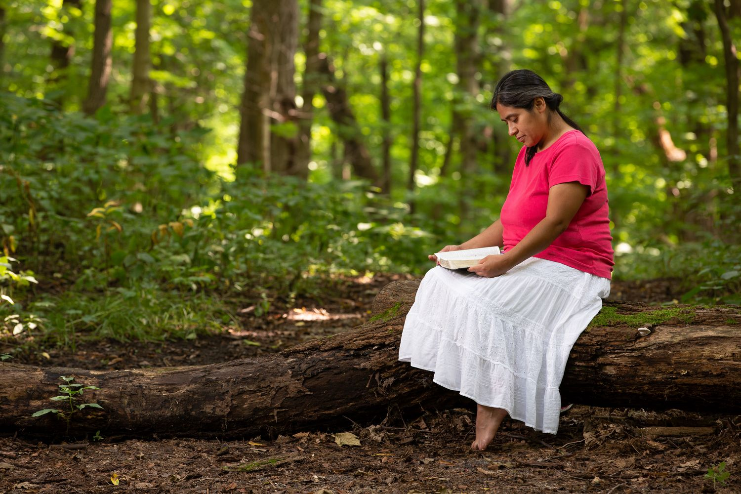 3 steps to successfully meditate on the word of god