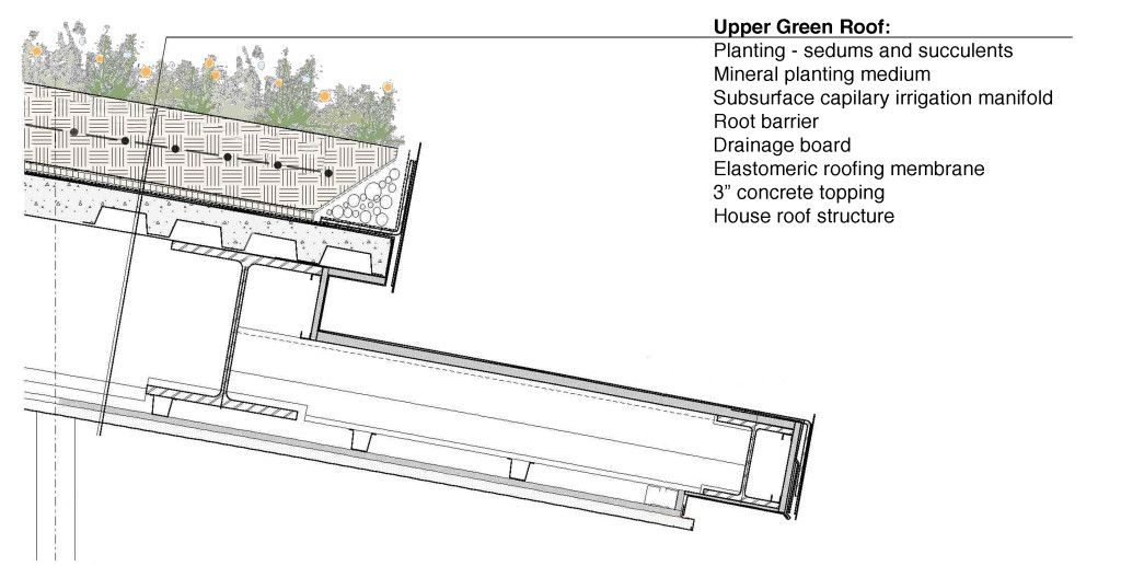 Coyo Extensive Diagram Green Roof Design Green Roof Roof Detail