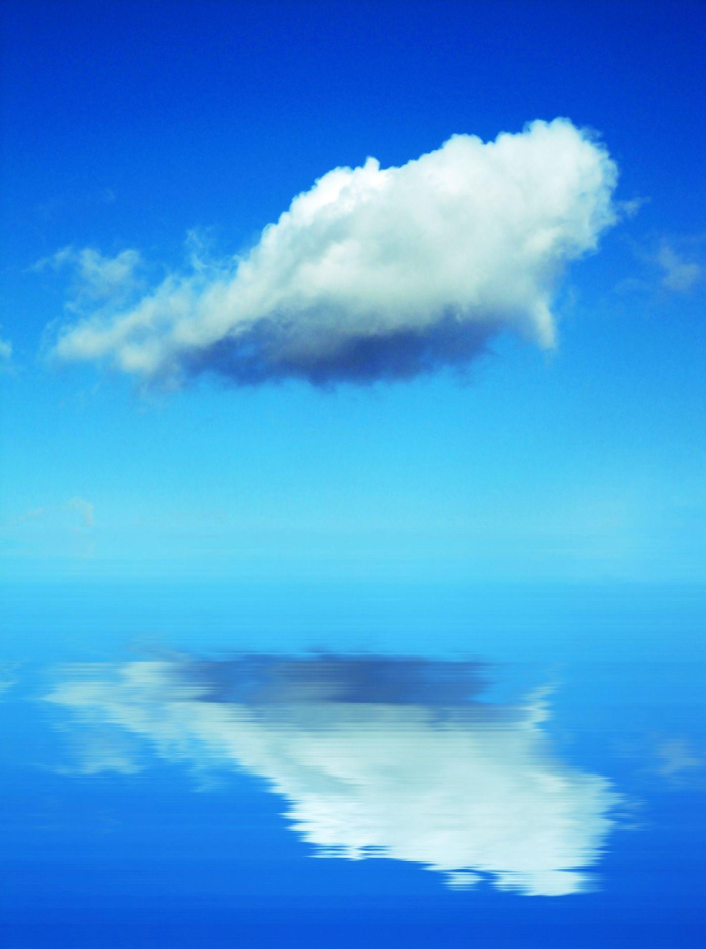 하늘에도 고래가, 물에도 고래가 둥둥