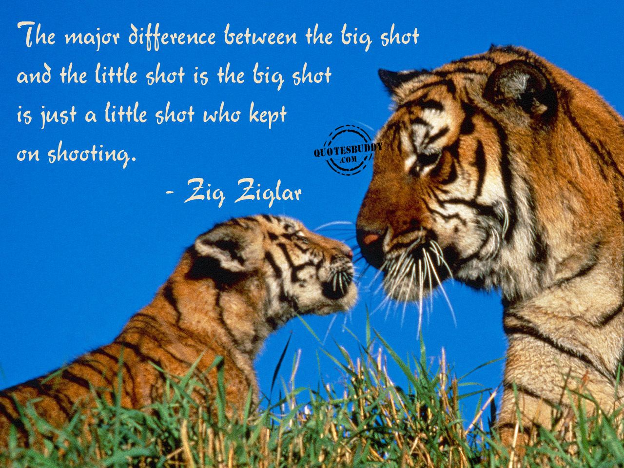 difference between a job and a career quote urlhttp - Job Vs Career The Difference Between A Job And A Career