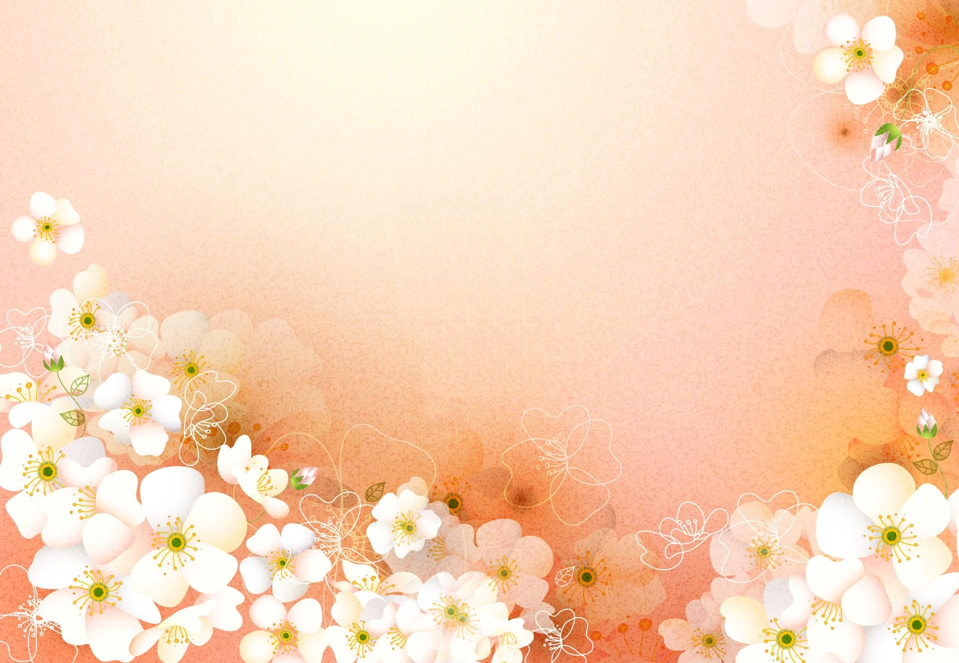peach floral background google search flower backgrounds peach flowers background hd wallpaper flower backgrounds peach flowers