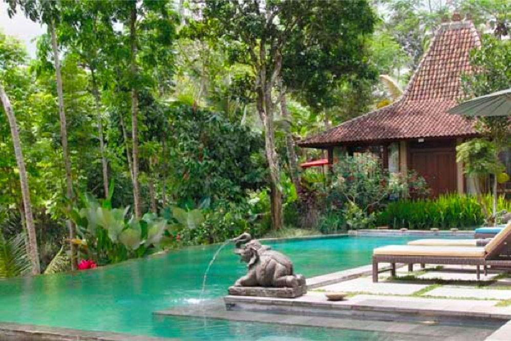 Bodhi Bali