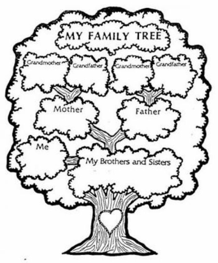 Family Tree Ders Içi Boyama Family Tree Worksheet Family Tree