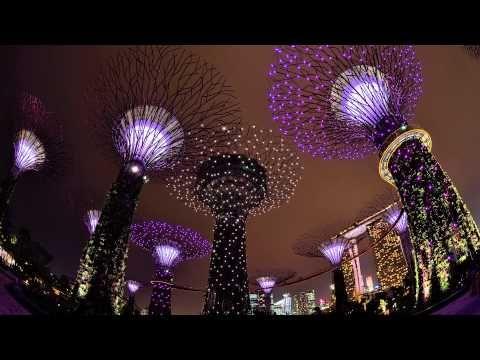 Singapore -- Gardens by the Bay -- Supertree Grove \u2013 Light  Sound