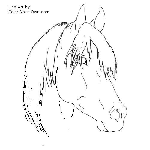 Aug educational coloring picture gallery horse coloring