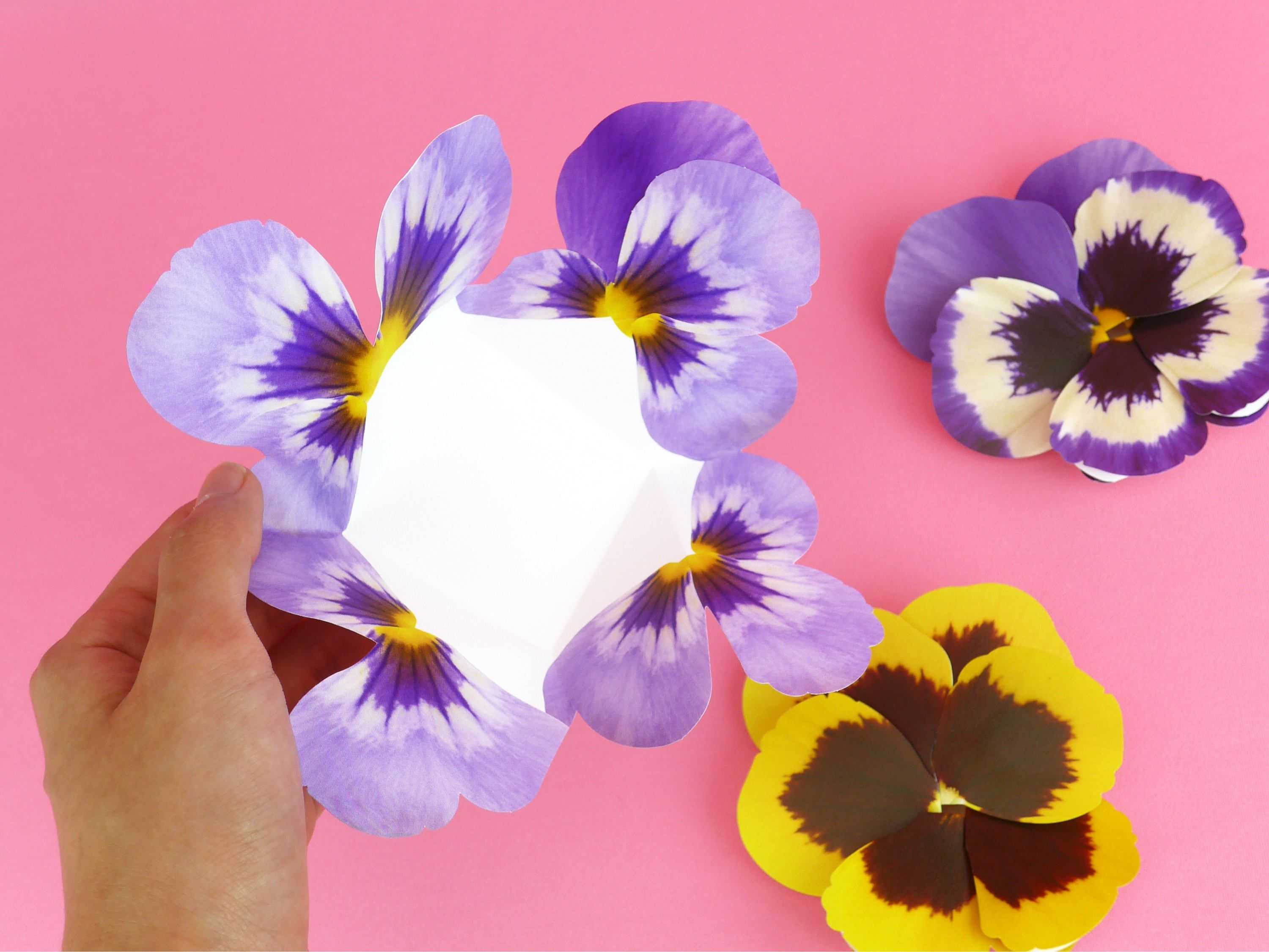 Pdf Template Flower Card Pansy Blue Mother S Day Etsy In 2021 Pop Up Card Templates Diy Pop Up Cards Pop Up Flower Cards