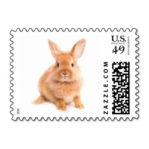 Rabbit Postage We have the best promotion for you and if you are interested in the related item or need more information reviews from the x customer who are own of them before please follow the link to see fully reviewsThis Deals          	Rabbit Postage Here a great deal...