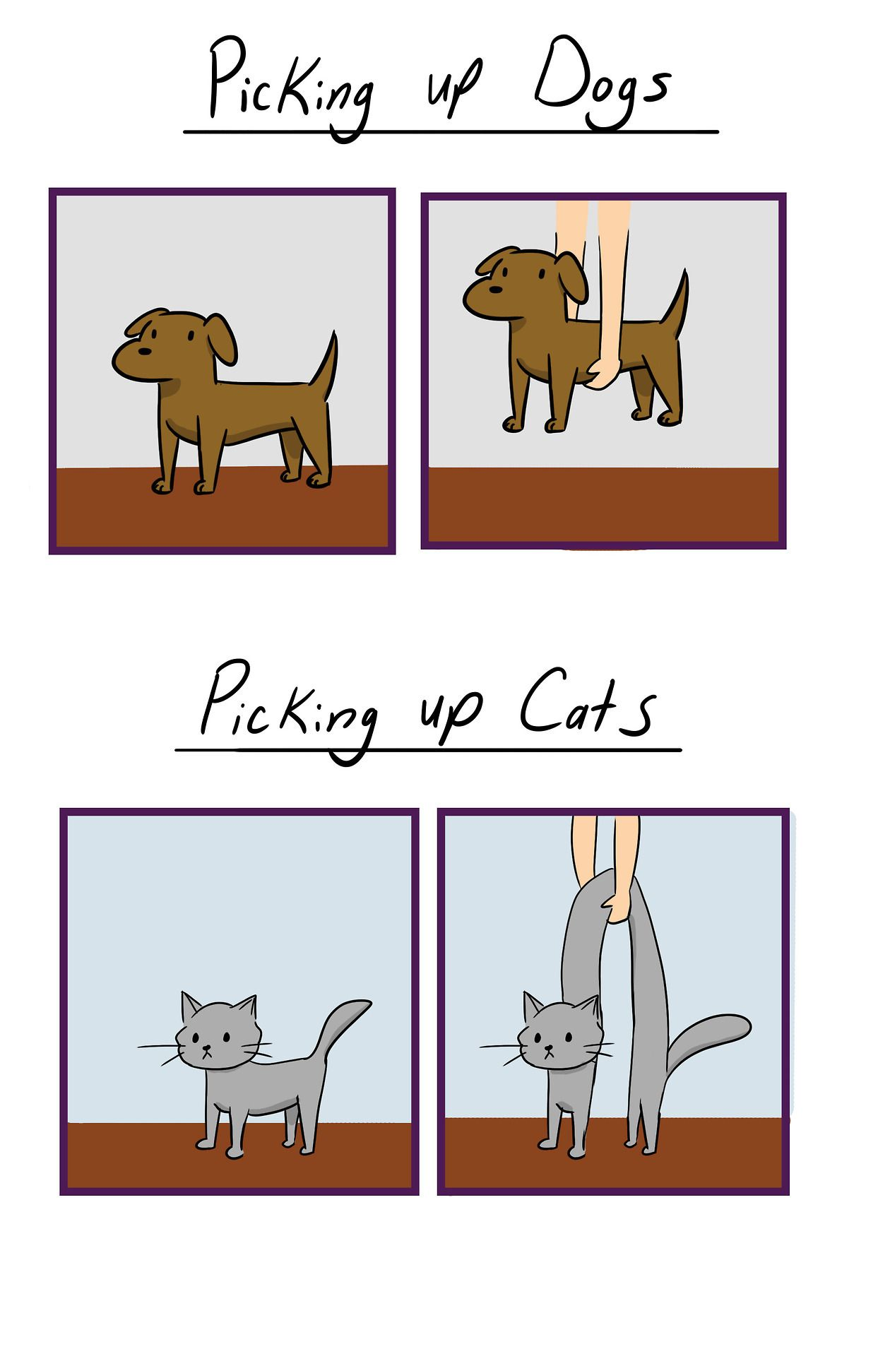 Picking up Dogs Vs. Cats http//ift.tt/2wEhvuP Funny
