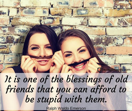 Popular Quotes About Friendship Adorable Famous Friendship Quotes  Quotes  Pinterest  Famous Quotes