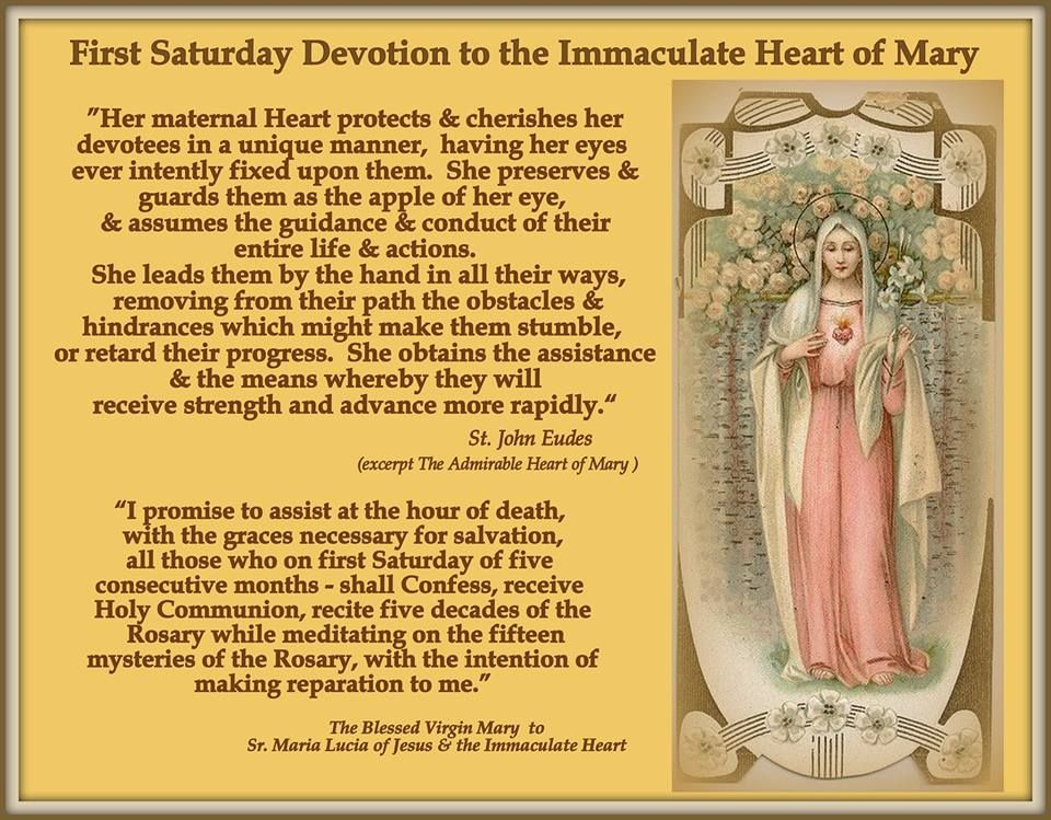 Sister Maria Lucia of the Immaculate Heart