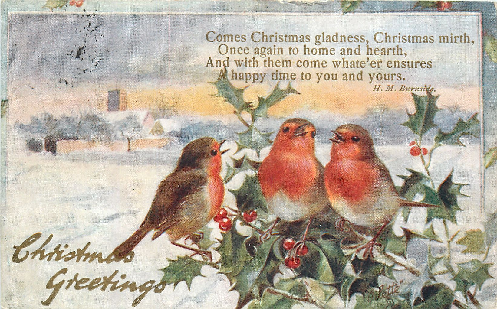 Full Sized Image: CHRISTMAS GREETINGS three robins right on holly - TuckDB