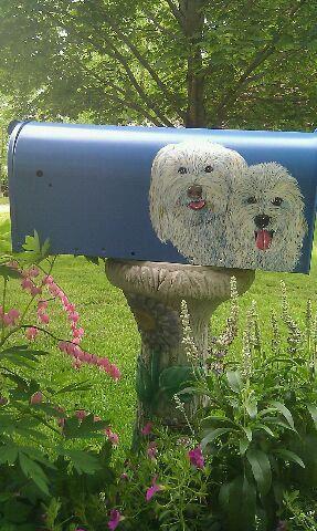 Bichon Hand Painted Pet Portrait Mailbox by TerryMiddletonArt, $85.00