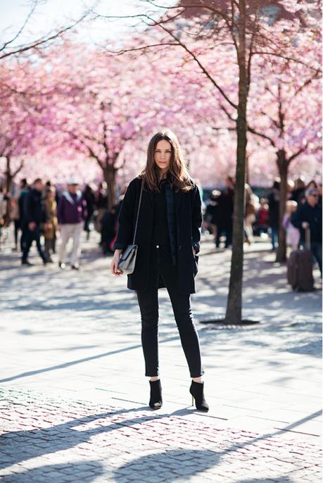 All black / cherry blossom