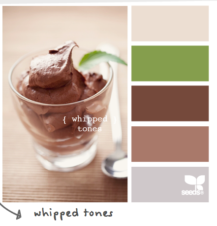 Whipped Chocolate Color Palette