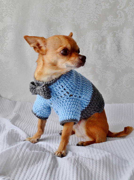 Crochet Dog Sweater Dog Sweater With Bow The Oxford Dog Sweater
