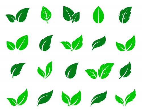 Green Abstract Leaf Icons Natural Set On White Background Leaf Images Icon Set Free Vector Art