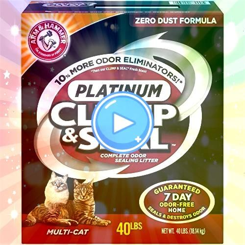 HAMMER Clump  Seal Platinum Cat Litter MultiCat 40 lb Purina Tidy Cats Non Clumping Cat Litter Instant Action Low Tracking Cat Litter  30 lb Bag Graduate from spaghetti...