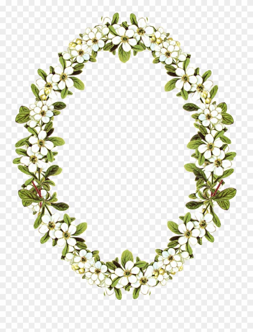 Floral Clipart Oval Frame Oval Flower Frame Png Transparent Png Flower Frame Png Flower Frame Flower Picture Frames