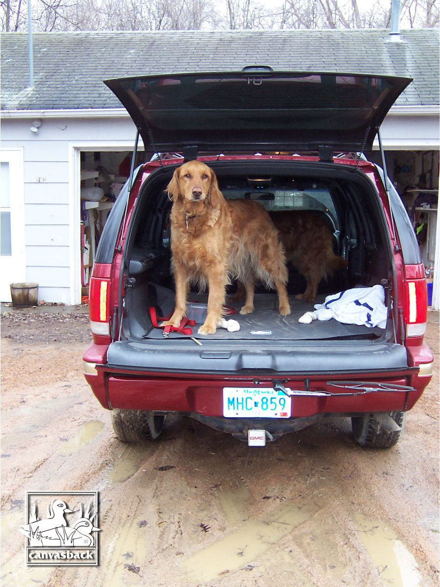 Protect Your Truck From Mud And Muck This Spring Find Your Customized Cargo Liner At Canvasback Com Canvasback Cargoliner Cargo Liner Muddy Paws Dog Lovers