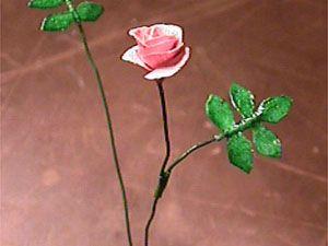 Kokonainen ruusu